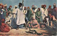 Tuck Postcard Snake Charmer Snake On rock In Egypt #9018