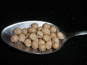 Garbanzo Beans, Chick Peas, USDA Certified ORGANIC, Non-GMO,  Hummus, BULK