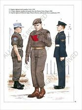 PLANCHE UNIFORM PRINT  Armée canadienne Canadian Armed Forces Canada Army