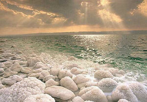 Natural Eucalyptus Dead Sea Salt 10 lbs for Bath & Homemade Salt Scrubs