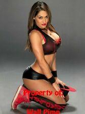 NIKKI BELLA WWE WCW WWF DIVAS Poster Print 24x36 WALL Photo 1