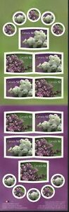 Canada 2007 MNH S-A Booklet, Odd Shape Stamps, Lilacs Flowers