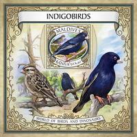 Maldives 2017 MNH Indigobirds Viduidae Wilson's Indigobird M/S Birds Stamps