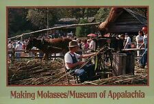 Making Molasses,Museum of Appalachia,Norris, near Knoxville,Tennessee - Postcard