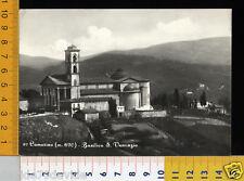 27548] MACERATA - CAMERINO - BASILICA S. VENAZIO