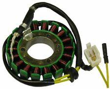 18-Coil Stator Coil for CF250 250cc Water motor scooter, CN250 CH250