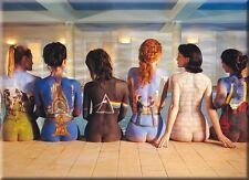 Pink Floyd Backart Flat Fridge Magnet (nm)