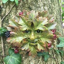 Hawthorn Green Man Garden Ornament Wall Plaque Face Berries Leaf Tree NEW 09012