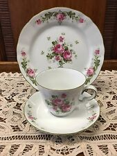 Winterling Bavarian Porcelain Tea Set Trio Cup Saucer And Plate