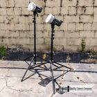 Elinchrom D-Lite-4 IT 400Ws 2-Light Studio Lighting Kit with Light Stands + Bags