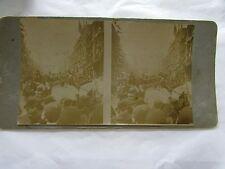 ANTIQUE STEREO CARD PHOTOGRAPH PARADE MELBOURNE STOCKMEN MOUNTED POLICE