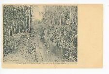 Maitland Canal WINTER PARK FL Rare Orange County EL Maxson 1913