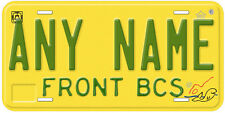Baja California Sur Mexico Any Name Novelty Auto License Plate BC1