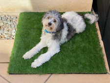 Synthetic Landscape Fake Grass, Artificial Pet Turf Lawn 2' x 3' ft