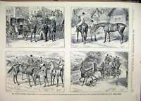 Original Old Antique Print 1889 Advert Ellimans Embrocation Horse Coach Sketches