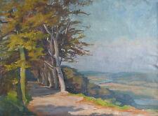 Ölbild Gemälde Landschaft Hubert Cramer-Berke Essen Düsseldorf um 1925