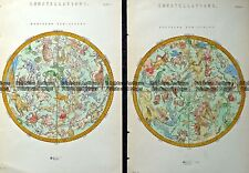 Antique Map 232-586 Constellations - Southern and Northern Hemispheres c.1890