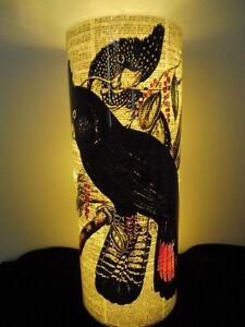 Black Cockatoo Bird Paper Lantern No.449, housewarming gifts, anniversary gifts