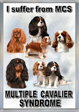 Cavalier King Charles Spaniel Dog Blank Card Design No 25 by Starprint