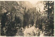 Original YOSEMITE 1912 SMALL Photo ON WAY TO EL PORTAL Y.N.P. California
