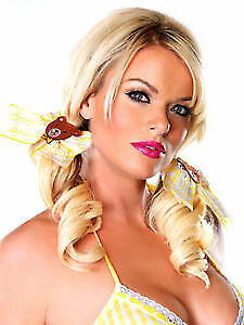 Sexy Goldilocks Yellow Gingham Bow w Bear Motif Hair Clip Costume Accessory Set