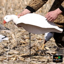 Avery Ghg Greenhead Gear Universal Motion Stakes Duck Goose Shell Decoys Dozen