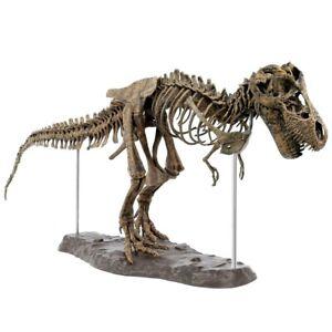 Tyrannosaurus Rex Assemble Skeleton Large Dinosaur Fossil Skull Animal Model Toy