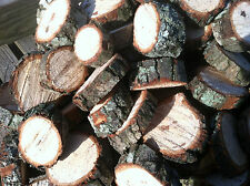 Pecan Wood Chunks for Grilling Smoking Barbecue Organic Insecticide Free