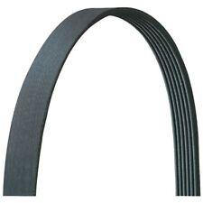 Serpentine Belt-VIN: K AUTOZONE/ DURALAST-DAYCO 520K5