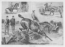 FOX HUNTING Making a Hunter - Antique Print 1893