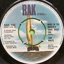 Tam White - What In The World's Come Over You - RAK 193 Ex Condition