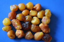 Natural Raw Rough Rare Drops Nugget Genuine BALTIC AMBER 18 gr