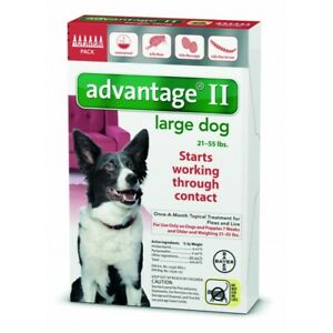 GENUINE BAYER ADVANTAGE II FLEA CONTROL FOR DOGS 21-55 LBS - NEW 6 PACK