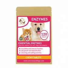 Digestive Enzymes For Dogs Cats and Puppies | Digestive Supplement