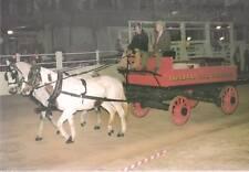 Brisbane Fire Brigade Horse Drawn 4-Wheel Hose Cart -   - POSTCARD