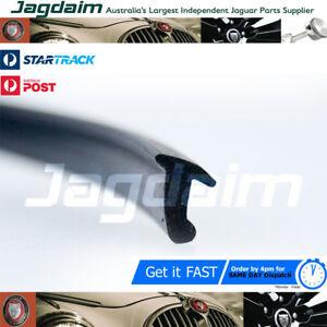 New Jaguar S3 XJ Screen seal BAC4794*