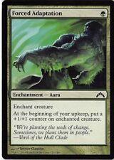 Rust Scarab   NM  x4  Gatecrash MTG Magic Cards Green Uncommon