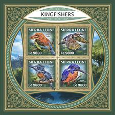 Sierra Leone 2017 MNH Kingfishers Kingfisher 4v M/S Bird Birds Stamps