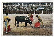 Killing The Bull Bull Fighting Photo Postcard c1920's