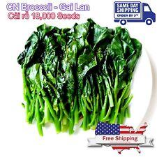 18,000 Heirloom Kailaan Chinese Broccoli Kale Kai Lans Asian Green Gai Lan Seeds