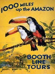 AMAZON TOUCAN RIVER BRAZIL S.AMERICA JUNGLE RAIN FOREST VINTAGE POSTER 946PY