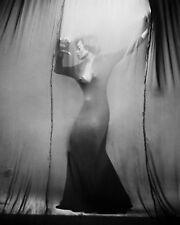 "Diana Ross 10"" x 8"" Photograph no 75"
