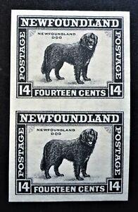 NEWFOUNDLAND #194a VF IMPERF PAIR NH**NEWFOUNDLAND DOG CAT.$300  CAN.SHIP $1.99