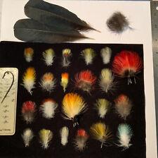 Multi Toucan Species Lot Salmon Fly Tying