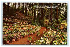 Green Mountain Gardens Calistoga California CA Chrome Postcard 1962 Napa County