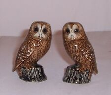 QUAIL Tawny Owl Salt & Pepper Cruet Set