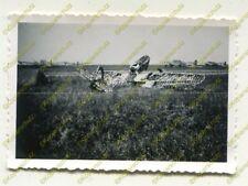 Foto, tanques cazador-departamento 19, aviones en el aeropuerto Douai,, B (n) 19484