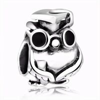 Ph.D. Owl Silver Charm Graduation Hot Gift Bead Fit 925 Sterling Bracelet Chain