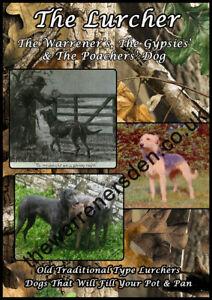 Warrener DVD - The Lurcher