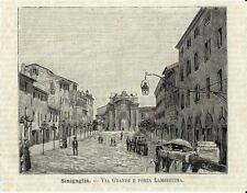 Stampa antica SENIGALLIA Via Grande Porta Lambertina Ancona 1891 Antique print